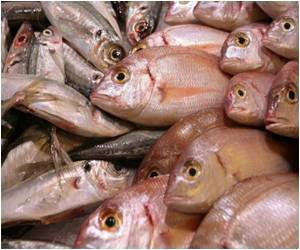 Fatty Acid Found in Fish Prevents Age-related Vision Loss: Study