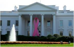 Pink for Breast Cancer Campaign to Get White House Endorsement