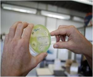 Superbug, a Time Bomb, Needing Global Response