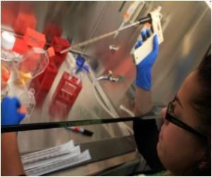 Lift Stem Cell Funding Ban, US Govt Asks Court