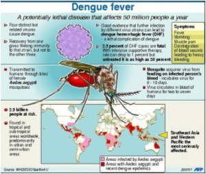 Dengue Claims 35 Lives in Vietnam, 33,000 More Affected