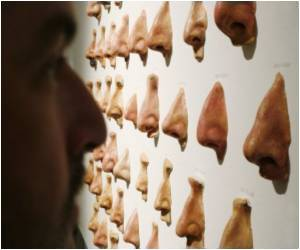 Study Shows Why Men Have Bigger Noses Than Women