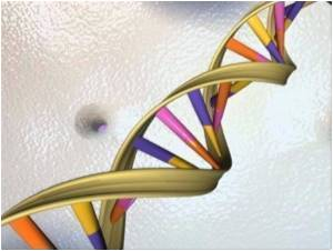 Amyotrophic Lateral Sclerosis Causing Gene Identified