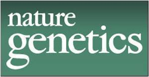 Men With a Variant Form of Immune Receptor Gene carry an enhanced Risk of developing Lupus