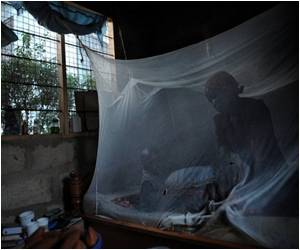 Researchers Raise Qualms Over Bednet Program for Malaria