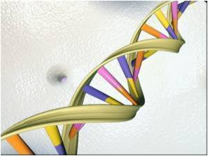 Engineered DNA Device can Rewire Cells to Respond to Any Signal