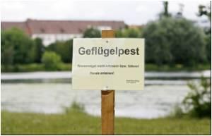 Six Cases of H5N1 Bird Flu Confirmed in Germany