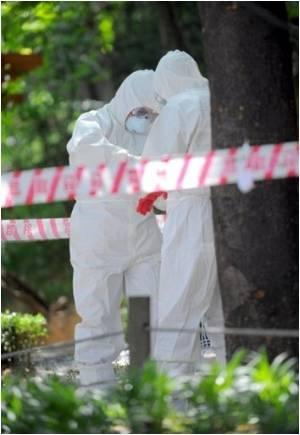 Year-round Monitoring for Bird Flu Begins in South Korea