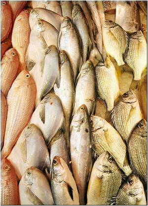 Fish Intake Lowers Alzheimer's Disease Risk