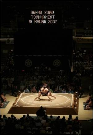 Grappling may Leave Sumo Wrestlers Infected by Herpes Skin Virus