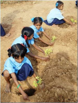 Border Guards Plant Saplings to Boost Environment Awareness