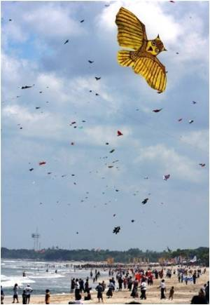 Kites Attack School Kids
