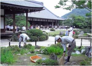 Gardens Under Threat in Kyoto, City Against Global Warming