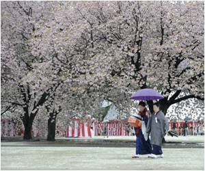 Government Says Japan Women Remain World's Longest-Lived