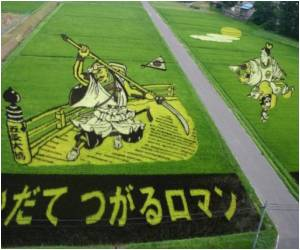 After Nuclear Disaster, Japanese Scientists Try to Engineer Radiation-Resistant Rice