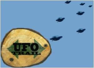 UFOs Sighted in Wellington and New Plymouth