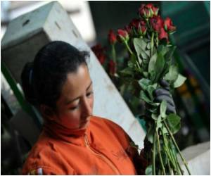 Valentine's Boost for Colombia Growers