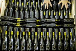 Hoax french Wine in market