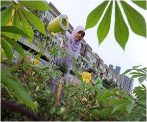 Indonesian Youth Turning Their Town Green