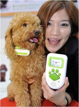 Japanese Company to Launch Toy That 'translates' Dog Barks