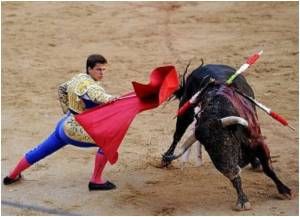 Bullfighting to be Banned in Catalonia, Spain