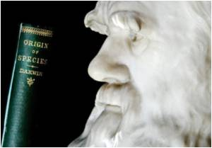 Darwin's Contribution to Evolutionary Theory may Not be Original, Claims Scientist