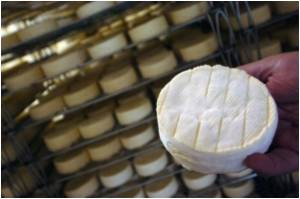 Stinky Czech Curd Cheese Thrives as EU Delicacy