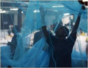 Malawi Launches Anti-malaria Drive by Distributing One Million Free Nets