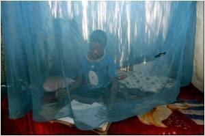 New Malaria Vaccine