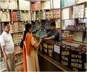 Himalayan Tea Growers in Nepal Turn a New Leaf