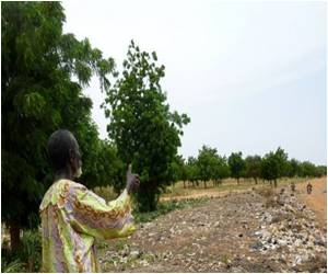 Green Belt in Niger Capital Dying a Slow Death