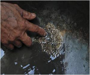 Scavengers Lured by Gold Dust in Pakistan City