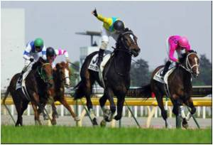 Horse Influenza Scare Puts Japanese Star at Risk