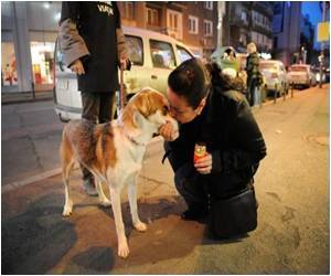 Human Perspective Might Be Understood By Dogs: Study