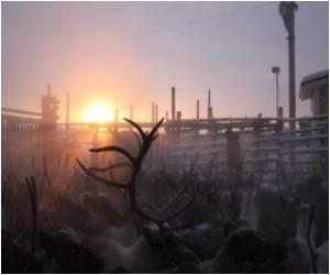 Reindeers' Eyes Change Colour With Arctic Seasons