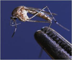 West Nile Virus Outbreak in Russia Kills 5, Over 100 Infected