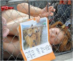 Penalties for Animal Cruelty to be Tightened in S. Korea