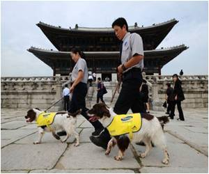 Fight to Protect S.Korea Heritage Taken Up by Sniffer Dogs