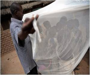 Treated Mosquito Nets Save Children's Lives