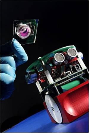 Scientists Develop 'Soft Robotic' Technologies Mimicking Biological Systems
