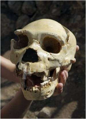 'First Europeans' Were Cannibals: Archaeologists
