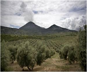 Prof. Swaminathan Says Organic Farming Will Usher in Ever-Green Revolution