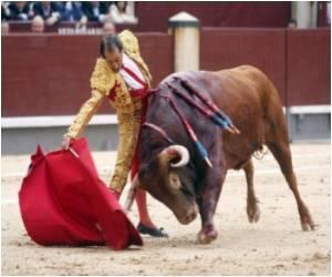 Vuvuzela Horns Banned at Pamplona's Bull Run Festival