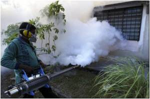Dengue Fever: A Major Cost Burden