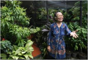 Indonesian Grandmother Spreads Green Ways in Smoggy Jakarta
