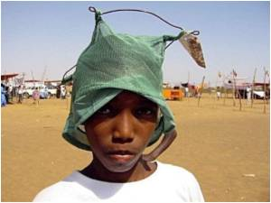 World Leaders Pledge 3 Billion Dollars for Malaria Control