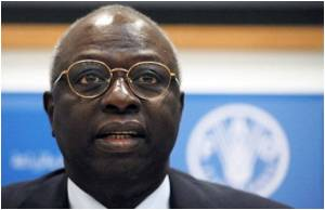 Launch Petition Against Hunger, Says UN Food Agency Boss