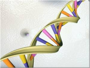 Complexity of Breast and Colon Cancer Genes: Variations Observed in Each Individual