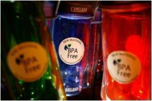 Exposure To BPA Impacts Fertility Of Female Offspring