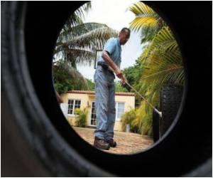 Miami Reports First Dengue Case In Almost 70 Years